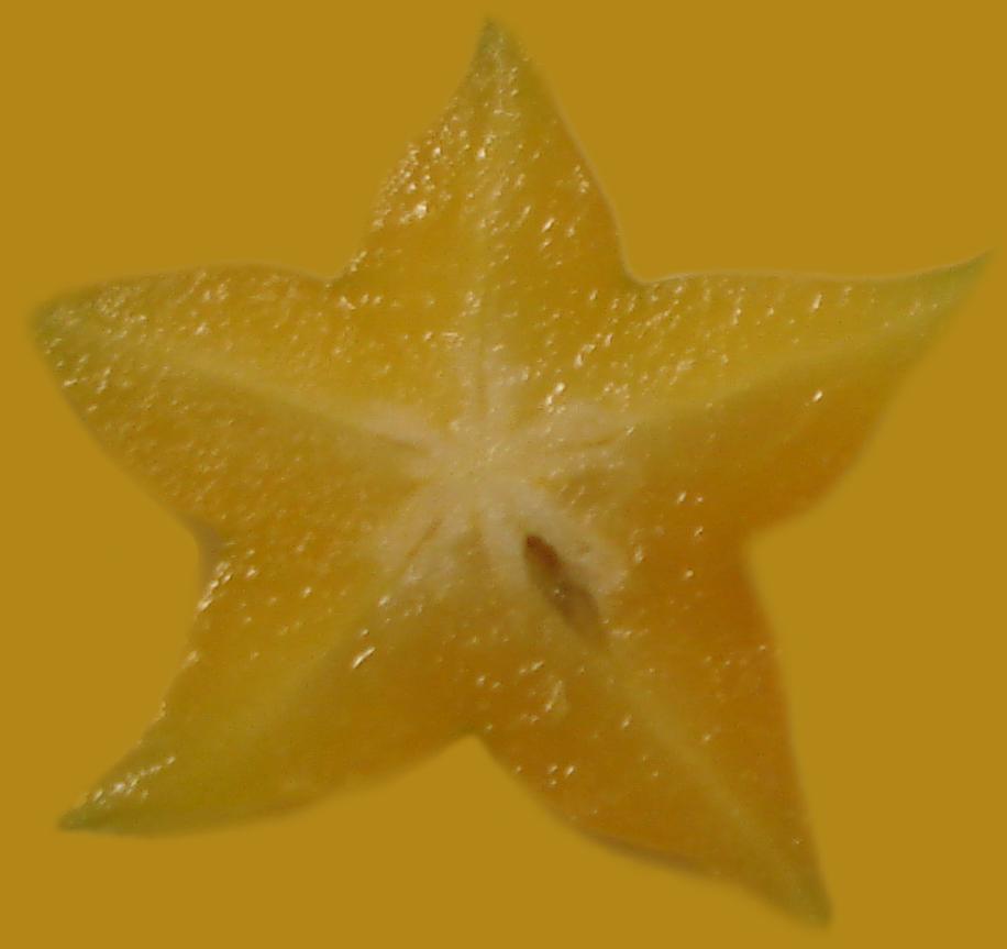 starfruit_astrogasm